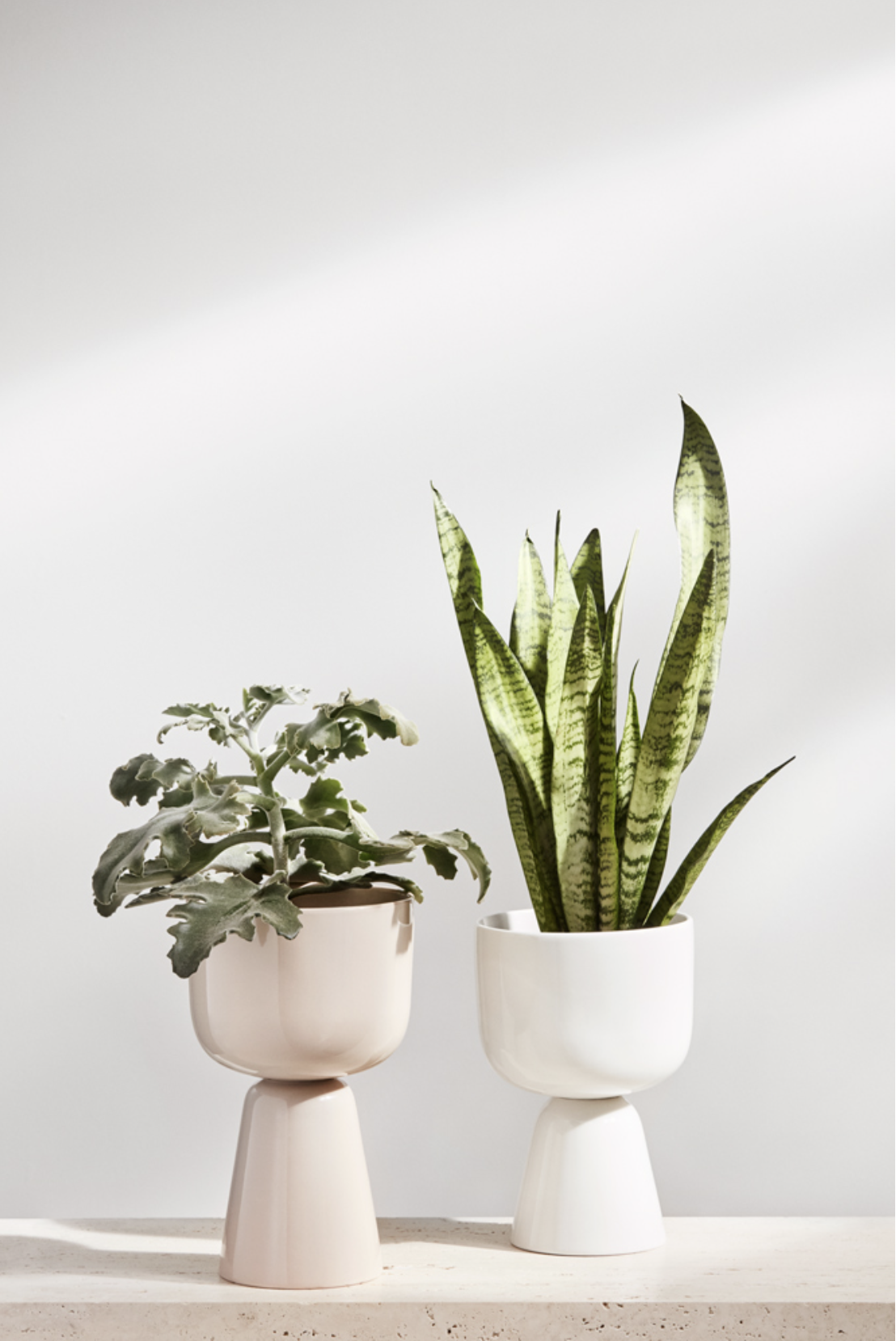 Iittala Spring 2020 for Iittala by Susanna Vento